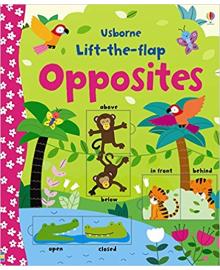 Детская книга с окошками  Lift-the-Flap: Opposites (9781409582588)